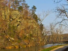 Along the C Canal near Violette's Lock in MD