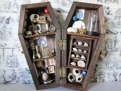 Nature Collection Miniature Coffin Shadow Box by AhtheMacabre on Etsy https://www.etsy.com/listing/243507084/nature-collection-miniature-coffin