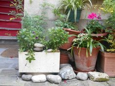 Paris Juin 2014 The perfect garden Stones and balance