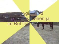 Aufsteigen mal anders - funny way of mounting a horse