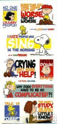 Peanuts Gang Large Mylar/Vinyl Sticker Sheet - Character Phrases