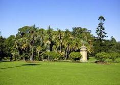 sydney parks - Google Search Sydney, Parks, Golf Courses, Google Search, City, Cities, Parkas