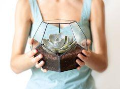 Cultivés dans des écrins de verres, ces jardins miniatures investissent discrètement, mais sûrement, nos intérieurs. Voici notre sélection.