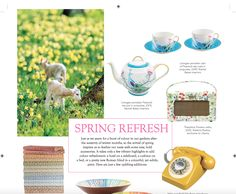 Rachel Bates turquoise Peacock and Blossom Limoges porcelain featured in The English Home magazine March 2016 issue