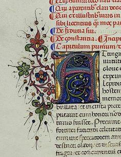 Vatikan_Biblioteca_Apostolica_Vaticana_Pal_lat_902ValeriusMaximusFacta_et_dicta_memorabilia_Italien15Jh