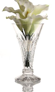 A gorgeous way to showcase flowers in a Waterford Crystal Ambassador Crystal Vase Baccarat Crystal, Crystal Vase, Waterford Crystal, Crystal Gifts, Cut Glass, Glass Vase, Crystal Palace, Champagne Flutes, Flowers