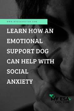 There's no doubt that dogs are amazing companions. They are cute, adorable, loyal, and offer unconditional love to their human-friends. But did you know that an emotional support dog can also help you deal with social anxiety? Click to know more.