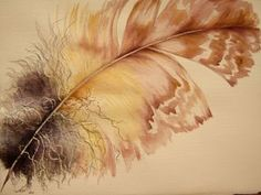 another lovely feather by Anji