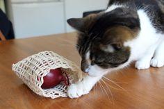 Pyssellen - Virka en fruktpåse. Ann Louise, Plast, Animals, Handbags, Animaux, Animal, Animales, Animais