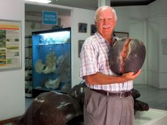 David Stanley holds a coco-de-mer, the world's largest seed, in the Natural History Museum in Victoria, Seychelles.