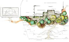 Landscape Design, by my good friend Susie Murphy Jones  :D   k ~