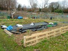 pallet fencing idea for allotment