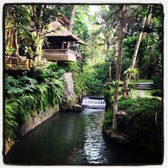 Beautiful Ubud, Bali, Indonesia