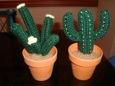 Fotos de Cactus tejidos a crochet en macetas de barro Vicente López
