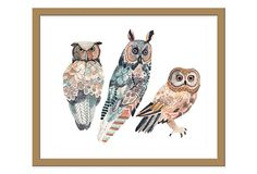 Really, I love all of the Michelle Morin ones . . . Michelle Morin, 3 Owls on OneKingsLane.com
