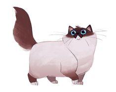 Daily Cat Drawings — 621: Birman #CatDrawing