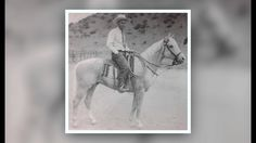 Plaudit was one of the early stallions whose impact on the American Quarter Horse breed would not be know until decades later. The 1930 palomino stallion was a ranch horse and bush track runner, and had a beautiful golden color. Learn more about Plaudit who has been honored with hall of fame membership by two breed registries.