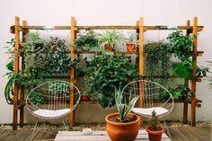 courtyard garden ideas