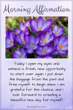 Every day is an opportunity to start fresh. Let go of the past and free yourself to begin anew.