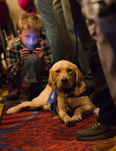 Recognizing Service Dogs - repinned by @PediaStaff – Please Visit ht.ly/63sNtfor all our pediatric therapy pins