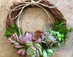 Large 14 Back in stock, this beautiful, Succulent Wreath is made with Jewel Tones and features a lovely collection of rich Escherichia succulents. Perfect for the holidays. Our wreaths are professionally made. Each is packed with beautiful greenhouse grown succulents. We use the highest quality, professional florist materials. We never substitute with inferior hobbyist or discount store materials. The succulents are securely anchored into a living moss frame. Our process and materials ensure…