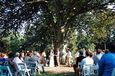Ceremony at the tree