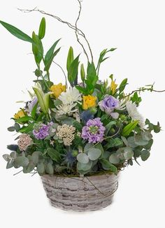 Cape Peninsula Flower & Gift Delivery for all occasions. Whether you are looking for luxury or budget, our flower shops have what you are looking for. Sympathy Flowers, South Africa, Flower Arrangements, Gift Delivery, Night, Cape, Plants, Gifts, Weddings