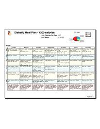 Food Plan Template Diabetic Meal Planner Template - Jen's Meal ...