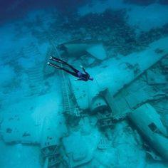 """""""#дайвинг #дайв #погружение #подводой #подводныймир #дайвингидругоймир #вода #интересное #факты #красота #море #океан #дайвер #отдых #позитив #diving #underwater #dive #divingandotherworld #ocean #sea #scubadiving #акваланг #scuba"""" Photo taken by @divingandotherworld on Instagram, pinned via the InstaPin iOS App! http://www.instapinapp.com (11/07/2015)"""