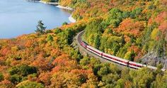 Agawa Canyon Train Tour is one of the most epic ways to experience autumn colours outside of Toronto. The train tour is quite far from Toronto, but this one-. Toronto Tourism, Ontario Beaches, Toronto Architecture, Sault Ste Marie, Canada Travel, Canada Trip, Train Tour, Free Things To Do, Places Of Interest