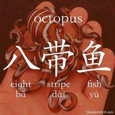 八带鱼 OCTOPUS A fish with eight stripes, this does make sense, doesn't? #octopus #chinese #china #calligraphy #hsk #rebus
