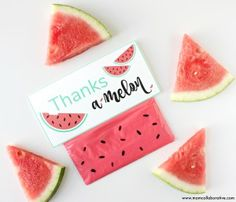 Watermelon slime Party favors sensory play DIY with Free printables!!