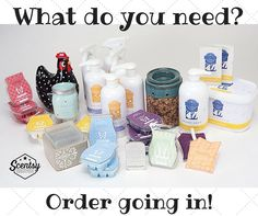 Contact me for all your Scentsy needs!