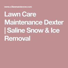 Lawn Care Maintenance Dexter | Saline Snow & Ice Removal