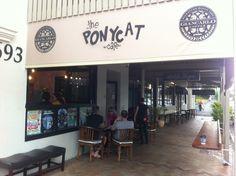 The Ponycat