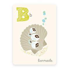 Barnacle   ABC Card