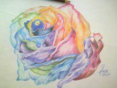 deleite de colores en una sola rosa :-)