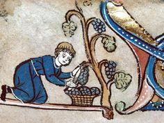 VASTE CUVE A FOULER. Psautier de la reine Marie, ca. 1310
