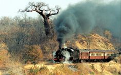 Trenes antiguos