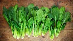 20 Veggies for Fall Gardening