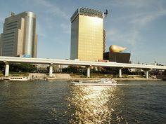 キラキラ光る隅田川の水面