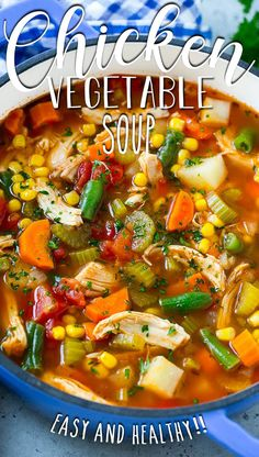 Chicken Broth Soup, Vegetable Soup With Chicken, Chicken And Vegetables, Chicken Soup With Potatoes, Chicken Tomato Soup, Healthy Chicken Soup, Chicken Soups, Soup Broth, Potato Soup