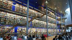 books. shelves. library.