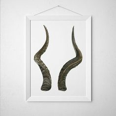 Amazing Horns poster. Gorgeous Animal print for your home and office. Adorable Watercolor print. Pretty hand drawn Cabin decor. BUY 1 GET 1 FREE