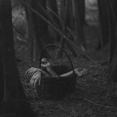 A basket of arms left in the forest. But why? And for whom?