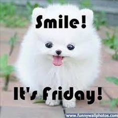 Smile it's Friday!  Good Morning everyone!  #TGIFriday #Friday #GoodMorning #AlmostTheWeekend #TomorrowIsSaturday #Smile #Laugh #LoveYourself #LiveYourLife #BeHappy #HaveFun #FeelGood #EnjoyToday