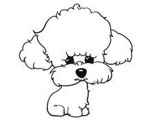 Dibujo de Cachorro de poodle para colorear