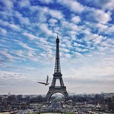#paris #eiffeltower #towereiffel #parisphoto #paris_photolovers #archimasters #excellent_structure #arquitecturamx #diagonal_symmetry #lookingup_architecture #unlimitedcities #sky_high_architecture #architecture_greatshots #focalmarked  #igersparis #loves_france_ #topparisphoto #loves_paris #iphoneography #iphoneonly #iphonesia #iphoneography