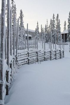 Winter in Sweden: snow-covered fence