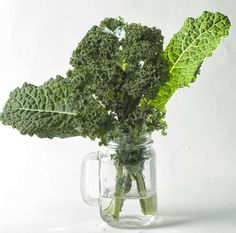 Kale recipes: This veggie helps your bones from being brittle. Esp. if you are taking Tamoxifen pill(that helps ward off cancer cells).